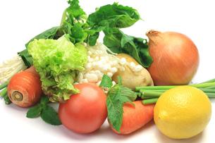 野菜の写真素材 [FYI00072014]