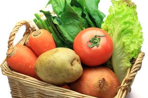 野菜の写真素材 [FYI00072016]