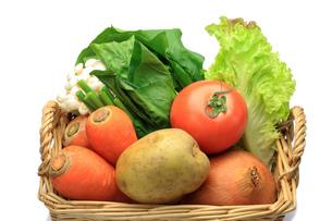 野菜の写真素材 [FYI00072028]