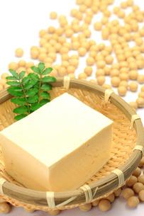 豆腐と大豆の写真素材 [FYI00072183]