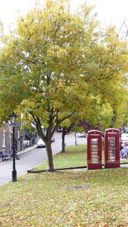 ロンドンの紅葉と赤い電話ボックスの写真素材 [FYI00073347]