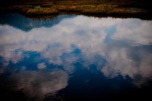池塘の素材 [FYI00073370]