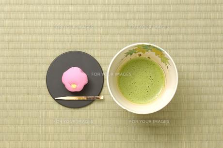 茶道の写真素材 [FYI00073459]