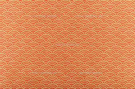 和紙の素材 [FYI00073488]