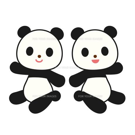 パンダの写真素材 [FYI00073740]