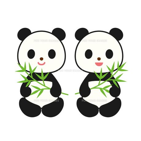 笹を持ったパンダの写真素材 [FYI00073773]