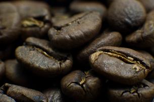 コーヒー豆の写真素材 [FYI00073808]