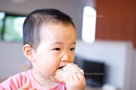 パンの写真素材 [FYI00073866]