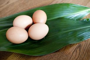 卵の写真素材 [FYI00074000]
