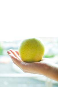 青リンゴの写真素材 [FYI00074023]