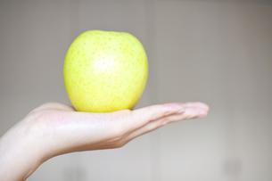 青リンゴの写真素材 [FYI00074030]