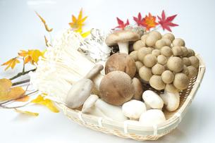 秋の味覚の写真素材 [FYI00074073]