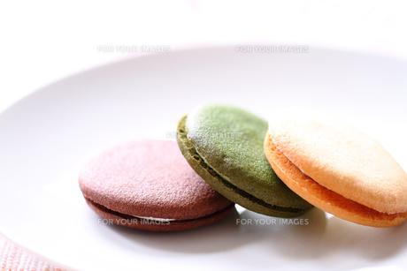 クリームサンドクッキーの写真素材 [FYI00074344]