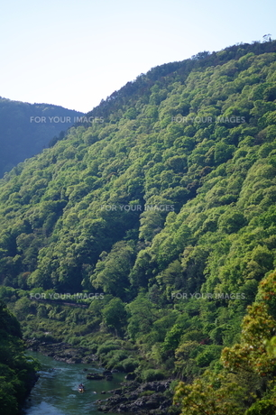 京都嵐山 渓谷と保津川下りの写真素材 [FYI00075237]