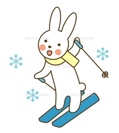 スキーをするうさぎの素材 [FYI00075449]