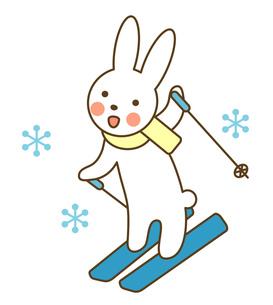 スキーをするうさぎの写真素材 [FYI00075449]