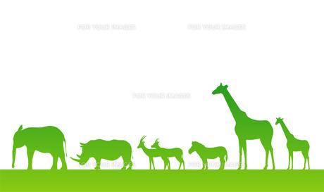 野生動物の素材 [FYI00075669]