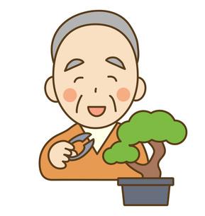 盆栽を剪定するおじいさんの写真素材 [FYI00075789]