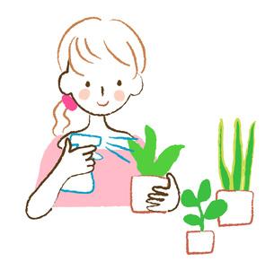 植物に霧吹きする女性の素材 [FYI00075882]