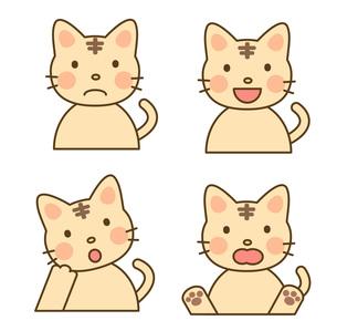ネコの素材の写真素材 [FYI00075963]