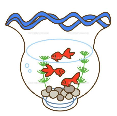 金魚鉢の写真素材 [FYI00076236]