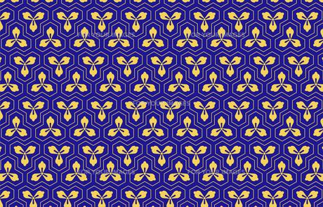 毘沙門亀甲の素材 [FYI00076349]