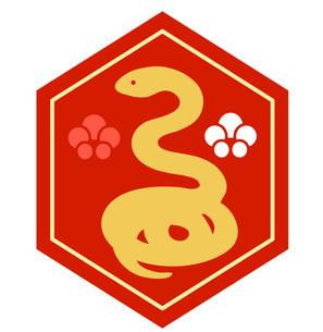 亀甲に蛇の素材 [FYI00076351]
