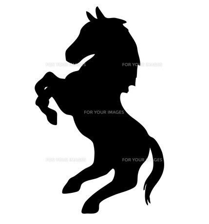 立ち上がる馬のシルエットの素材 [FYI00076420]