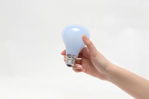 電球の写真素材 [FYI00076421]