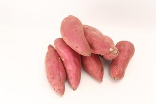サツマイモの写真素材 [FYI00076441]