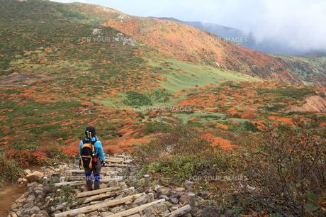 登山の写真素材 [FYI00076455]