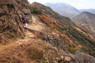 登山の写真素材 [FYI00076458]