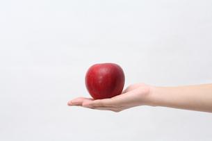 リンゴの写真素材 [FYI00076494]