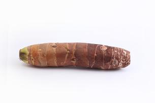 タケノコイモの写真素材 [FYI00076517]
