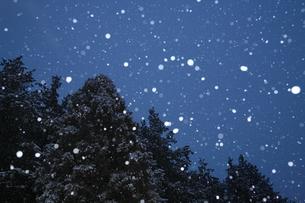 夜の雪の写真素材 [FYI00076520]