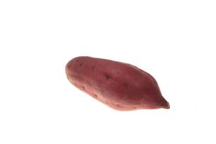 サツマイモの写真素材 [FYI00076521]