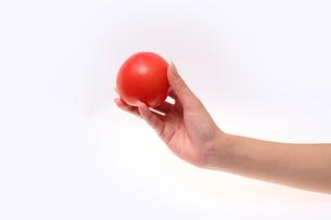 トマトの写真素材 [FYI00076534]