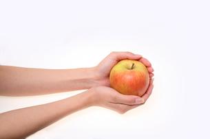 リンゴの写真素材 [FYI00076536]