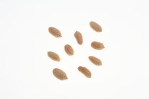 ピーナッツの写真素材 [FYI00076573]