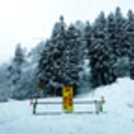 雪道の通行止めの写真素材 [FYI00076599]