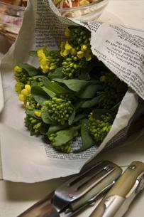 食卓の菜の花の写真素材 [FYI00076659]