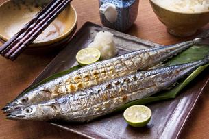 焼き秋刀魚の写真素材 [FYI00076718]