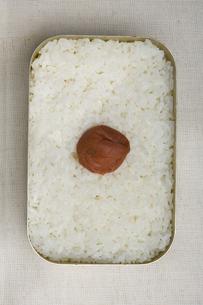 日の丸弁当の写真素材 [FYI00076783]