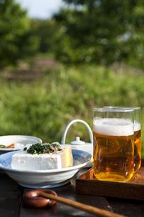 冷奴とビールの写真素材 [FYI00077679]