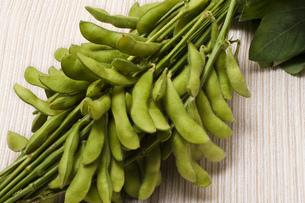 枝豆の写真素材 [FYI00077720]