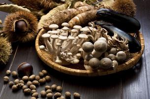 秋の食材の写真素材 [FYI00077845]