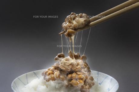 納豆ご飯の写真素材 [FYI00077877]