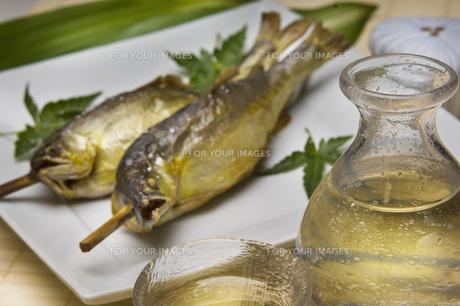 鮎の塩焼きと冷酒の写真素材 [FYI00077893]