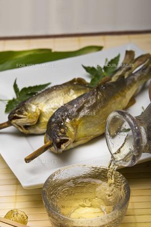鮎の塩焼きと冷酒の写真素材 [FYI00077897]