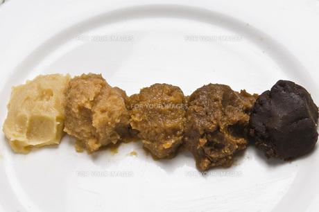 味噌(左から西京・信州・九州・仙台・八丁)の写真素材 [FYI00077912]